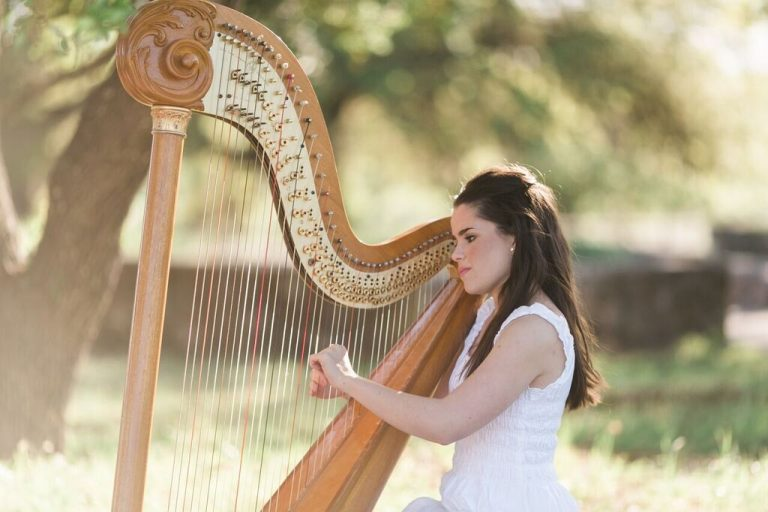 Harp in the Park